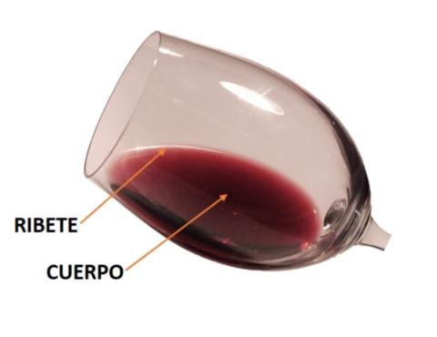 Ribete del vino tinto