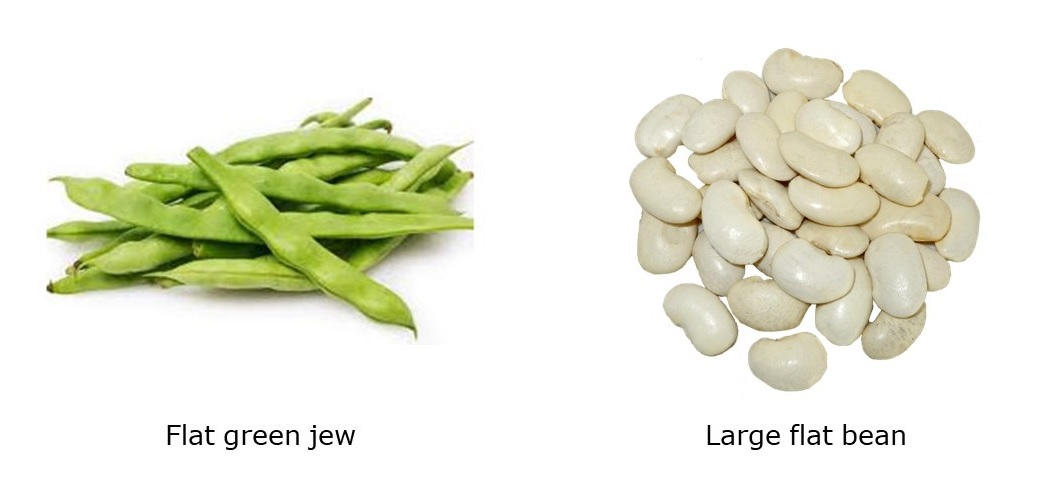 Flat green jew and large flat bean